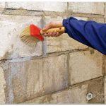 Как выбрать средства от плесени на стенах?