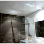 Выбираем лучший вариант потолочного покрытия для ванных комнат