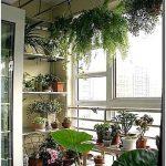 16 Способов создания цветников на балконе