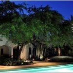 Волшебный сад – интересные идеи стильного освещения для вашего маленького рая
