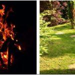 Отдых в любимом саду: как украсить участок своими руками