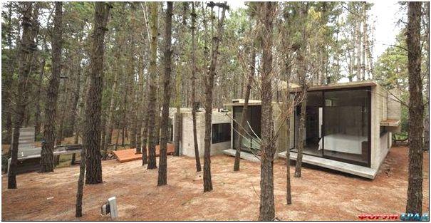Архитектура в чаще леса от дизайн-студии BAK