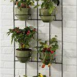 Милые цветочки на крошечном балконе – как создать садик без ущерба для функциональности
