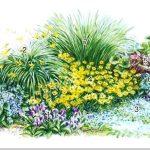 Первая радость цветовода: грамотно подбираем растения для весеннего украшения сада