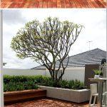 Один из самых простых вариантов ландшафтного дизайна: деревянные ящики для сада