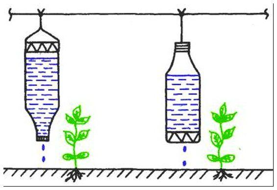 Как сделать полив в теплице из пластиковых бутылок