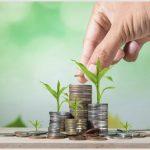 Преимущества тендерных кредитов