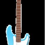 Бас-гитара. Футляры и чехлы