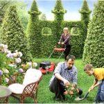 Как создать красивый сад: рекомендации и советы