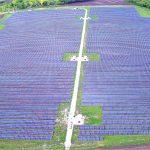 Продажа солнечной энергии в Украине: 4 причины выбрать компанию «Clean Energy», которая предлагает оптимальное сотрудничество
