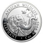 Более дешевая альтернатива золоту: серебряные монеты в слитках