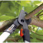 Як вибрати садовий секатор для обрізки дерев